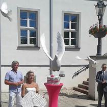 Auflass weißer Tauben zur Hochzeit
